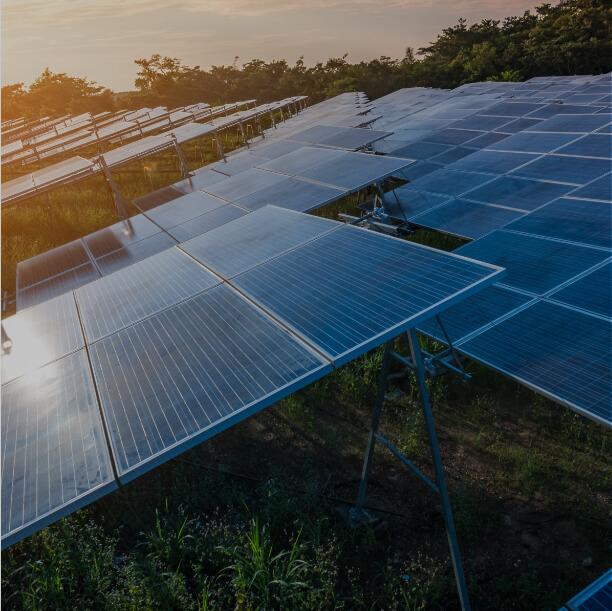 Solar panels at dawn