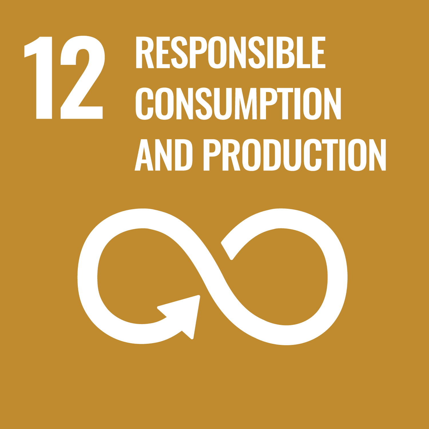 SDG 12 – Responsible consumtion and production